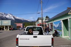 Dogs on the back of a truck in Skagway.jpg