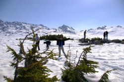 Users Submitted Photos of Skagway
