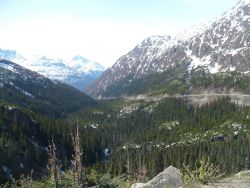 Skagway landscape from mountain road.jpg